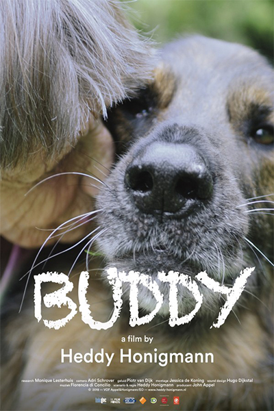 Buddy - Poster